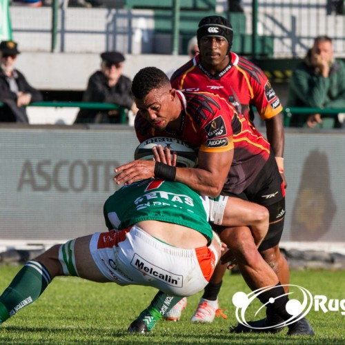 Southern Kings: la franchigia sudafricana